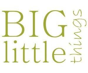 Big Little Things
